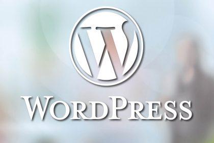 WordPress als Basis